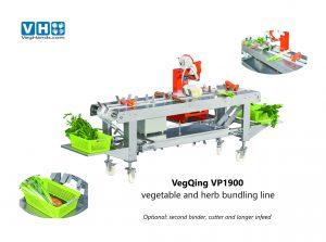 VegQing VP1900-small