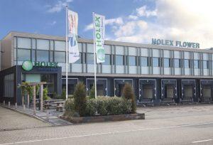 Holex Flower Holland office